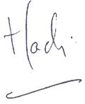 hadi_signature