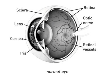 normal_eye_diagram